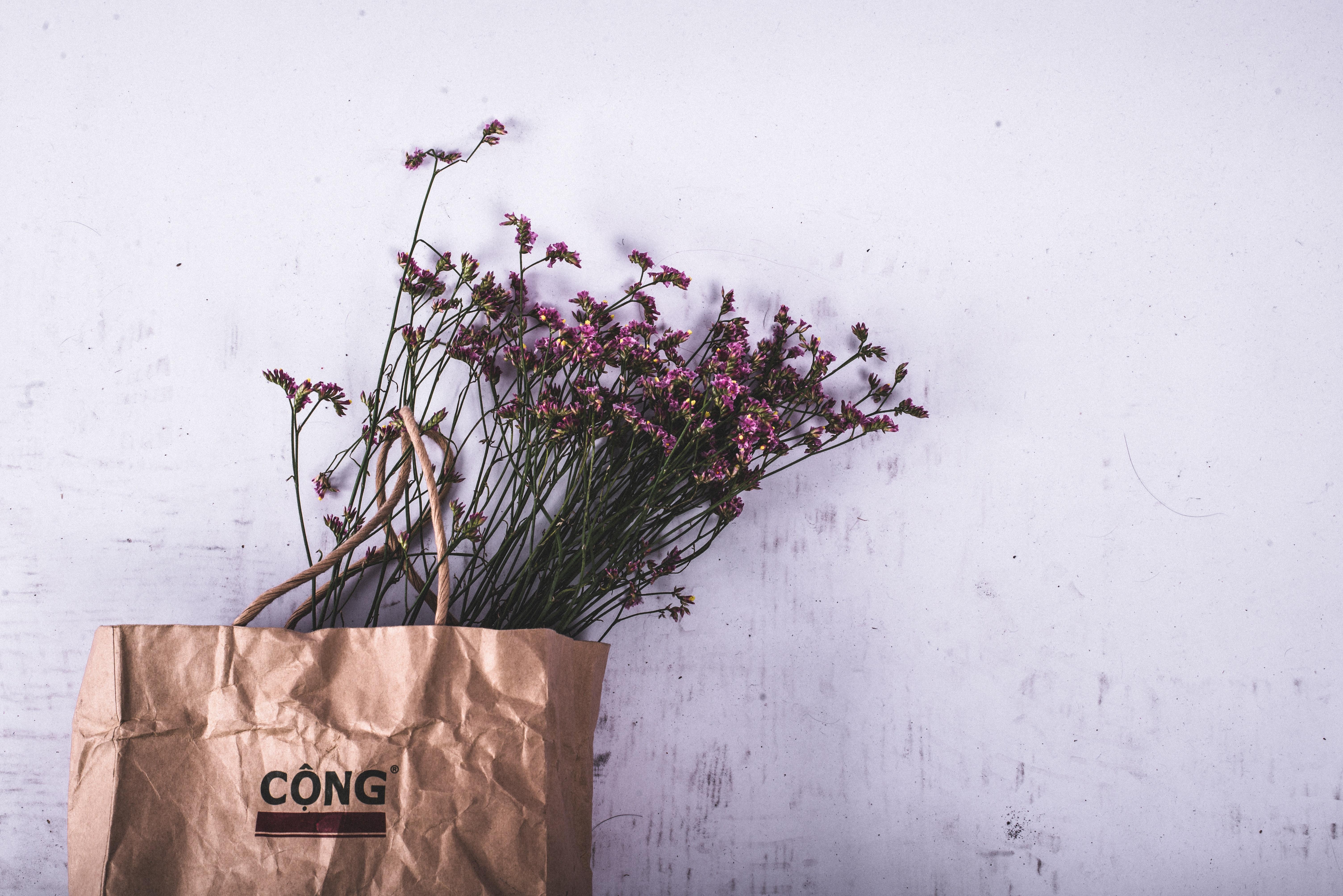 10 Buenas razones para no usar nunca bolsas de plástico
